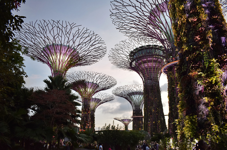 From world class attractions to delicious local food, Singapore is a kaleidoscope of colour, tastes and experiences. Here are some tips on what to see, eat and do in this South East Asian city state.