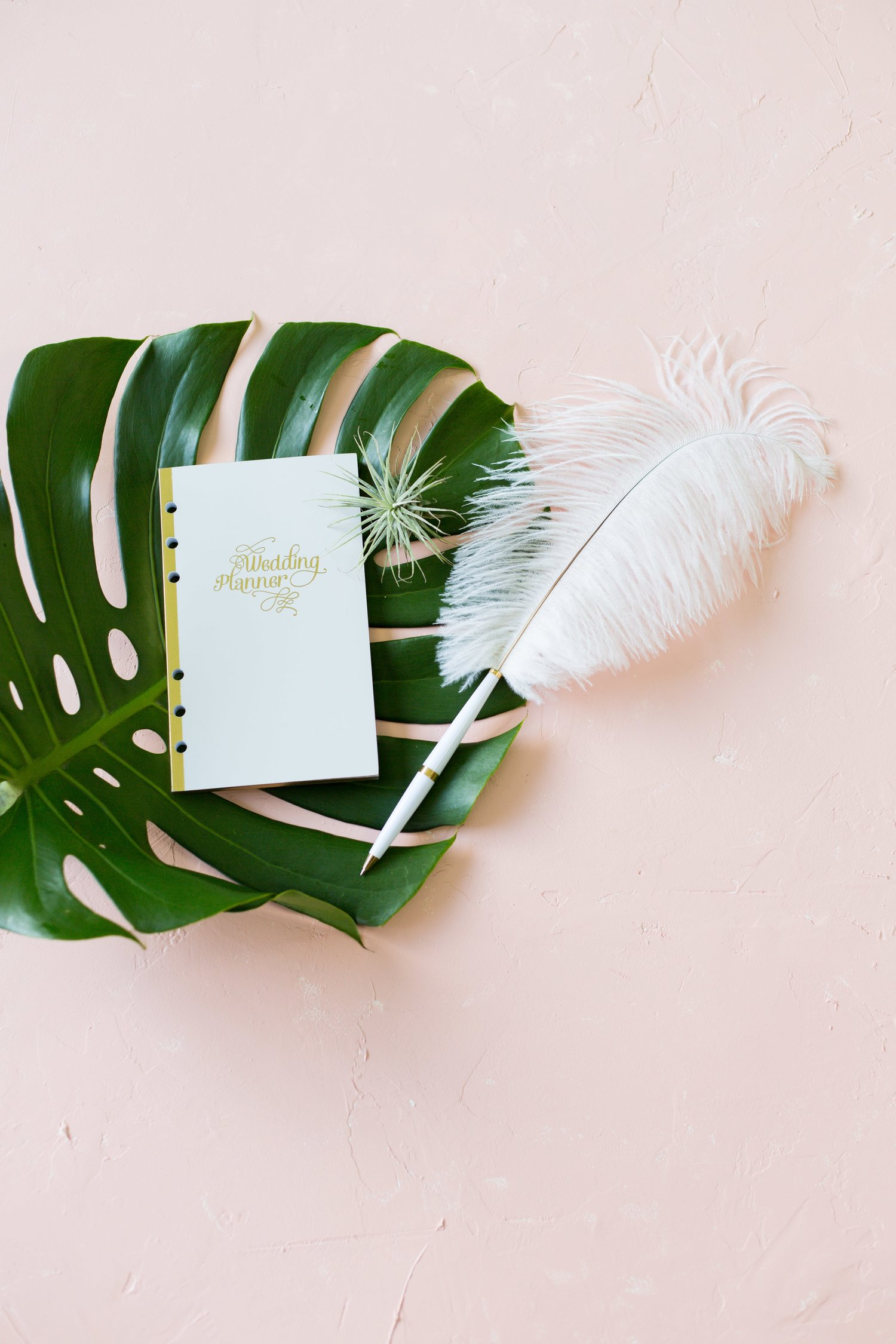 Wedding processional order guide the wed life wedding processional guide junglespirit Gallery