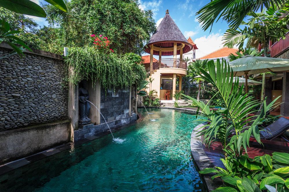 TRANSPORTS YOU INTO A JUNGLE PARADISE - Superb Amenities + Convenient Location