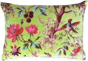 cushions-2213258-300x207.png