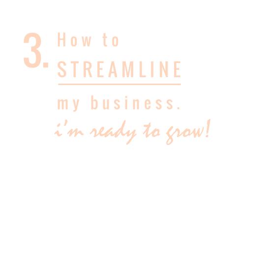 STREAMLINE MY BUSINESS // SAMOSBISTON.COM