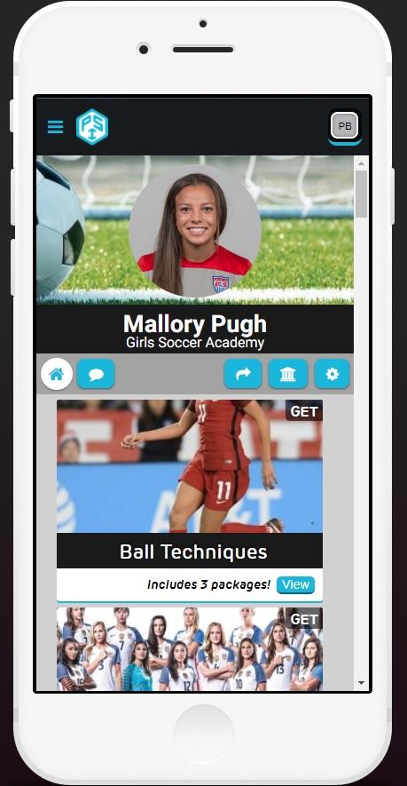 Mal_Ball techniques.jpg