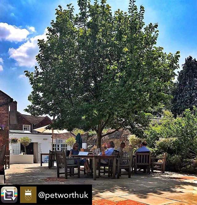 Repost from @petworthuk - It's officially summer in #PetworthUK! Fancy a glass of bubbly or a pint at the @angelpetworth today? ☀️#summesolstice