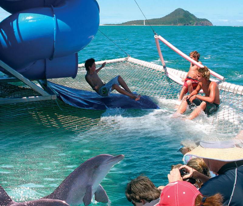 dolphin-discovery-cruise.jpg