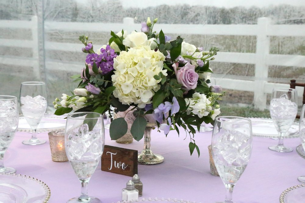 Centerpiece & fence Back Drop.jpg