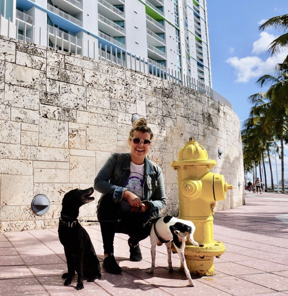 Picture by  Zen Dog Miami