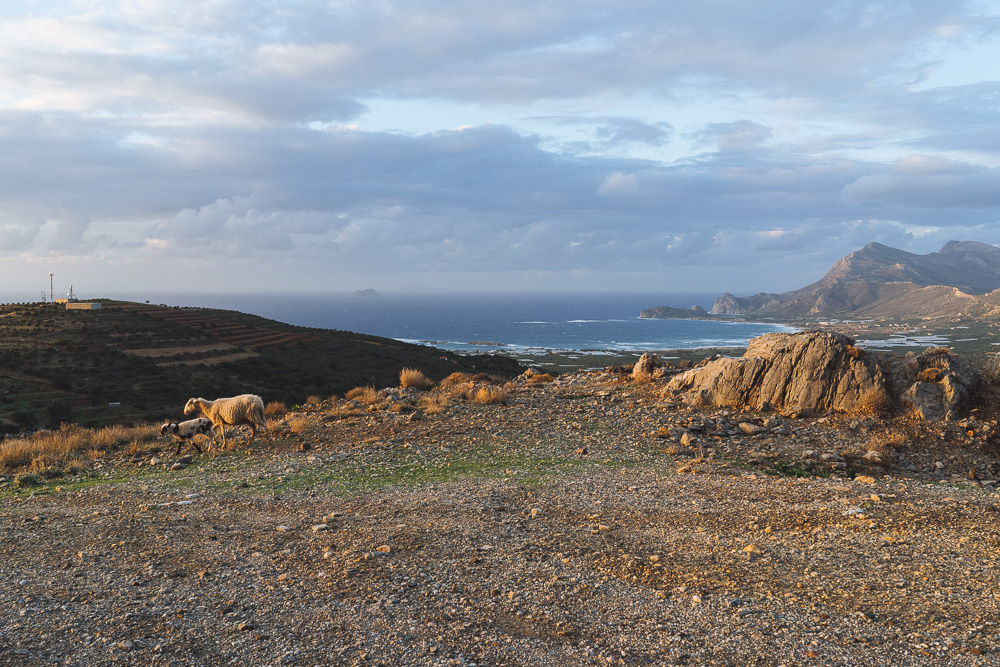 michaliskoulieris-crete-00513.jpg