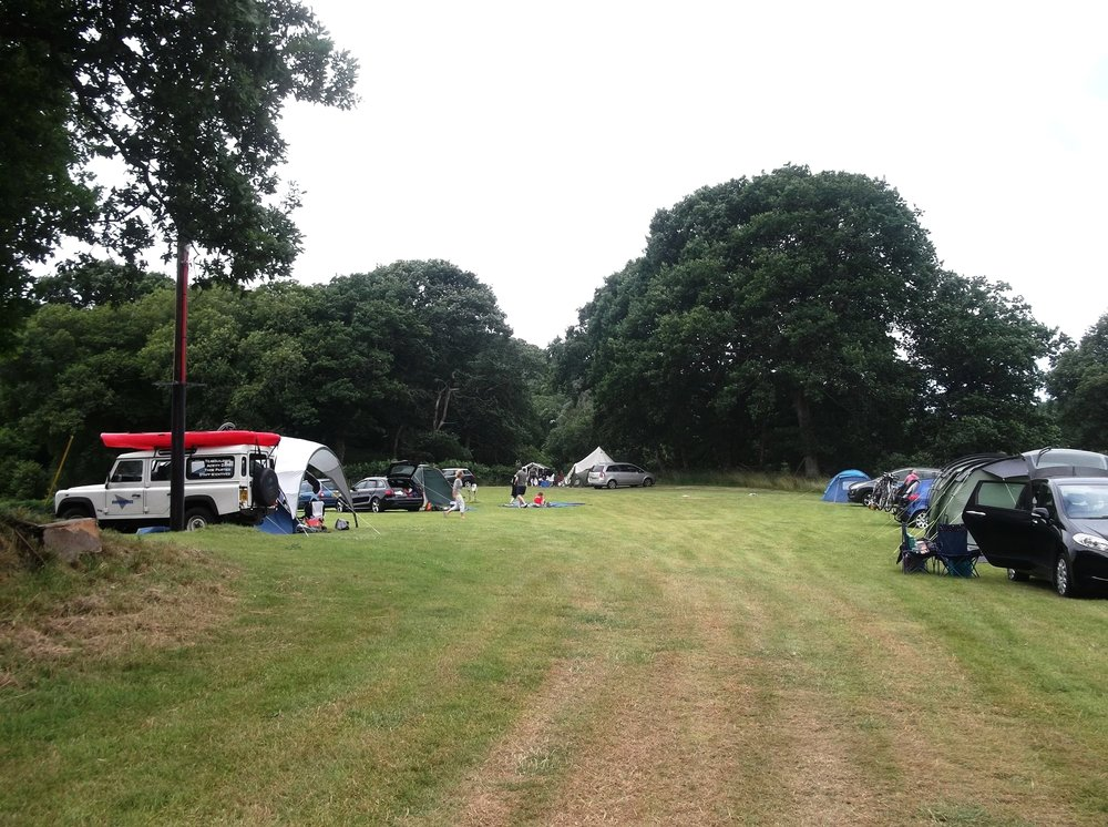 camping field busy3.jpg