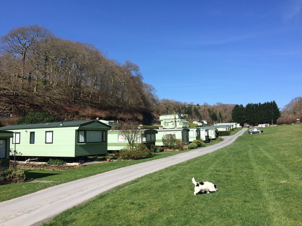 Dog-friendly static caravans