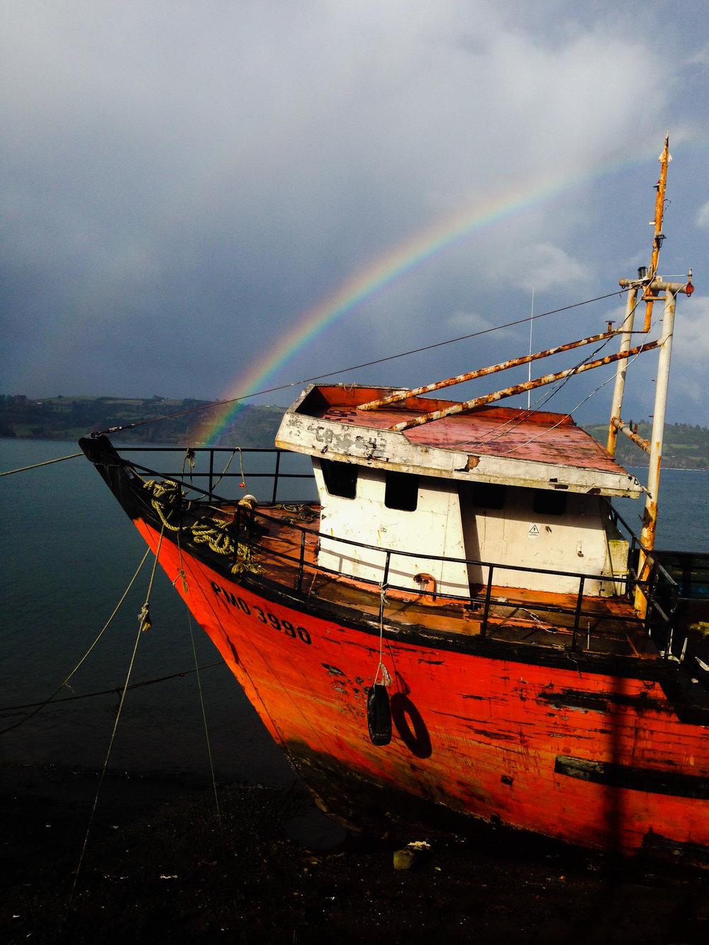 Homeostasis: ISLA Chiloe, Chile