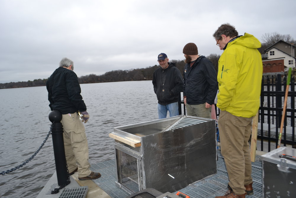 Installation of the structure to house the underwater video camera at the Upper Mystic Lake dam in Medford, MA with project partners MA-DCR and MA-DMF.