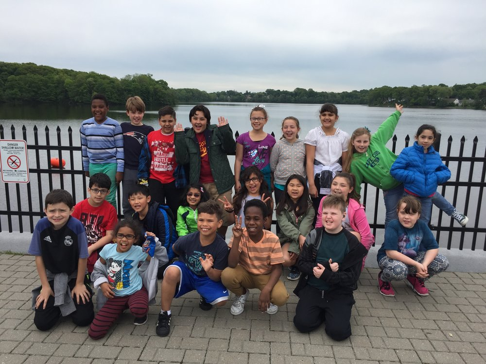 Students take a field trip to the Mystic Lakes fish ladder to observe herring and American eels.