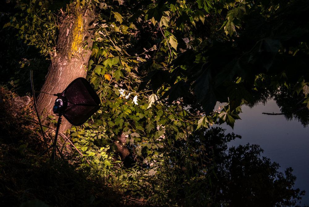 O local ideal para o flash afinal tinha muitos ramos de árvore que tapavam completamente a luz.