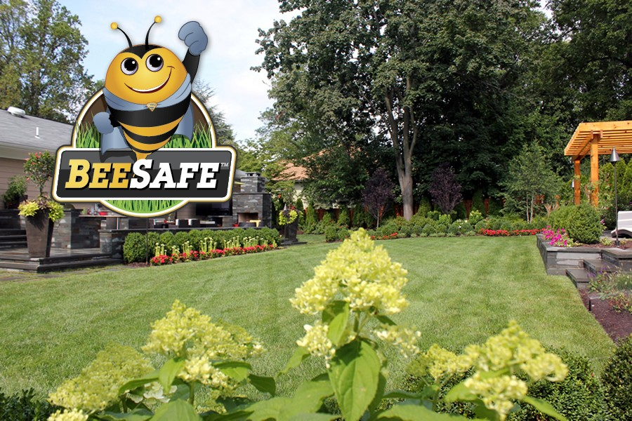 Image result for beesafe lawns