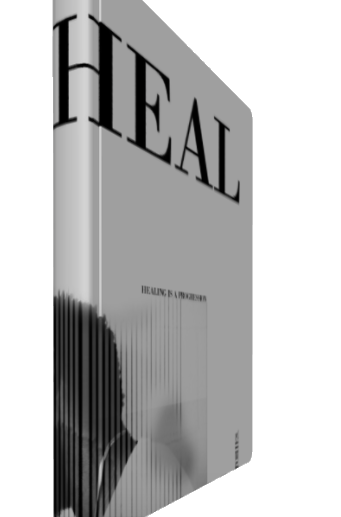 HEAL HERE JOURNALS - 2019