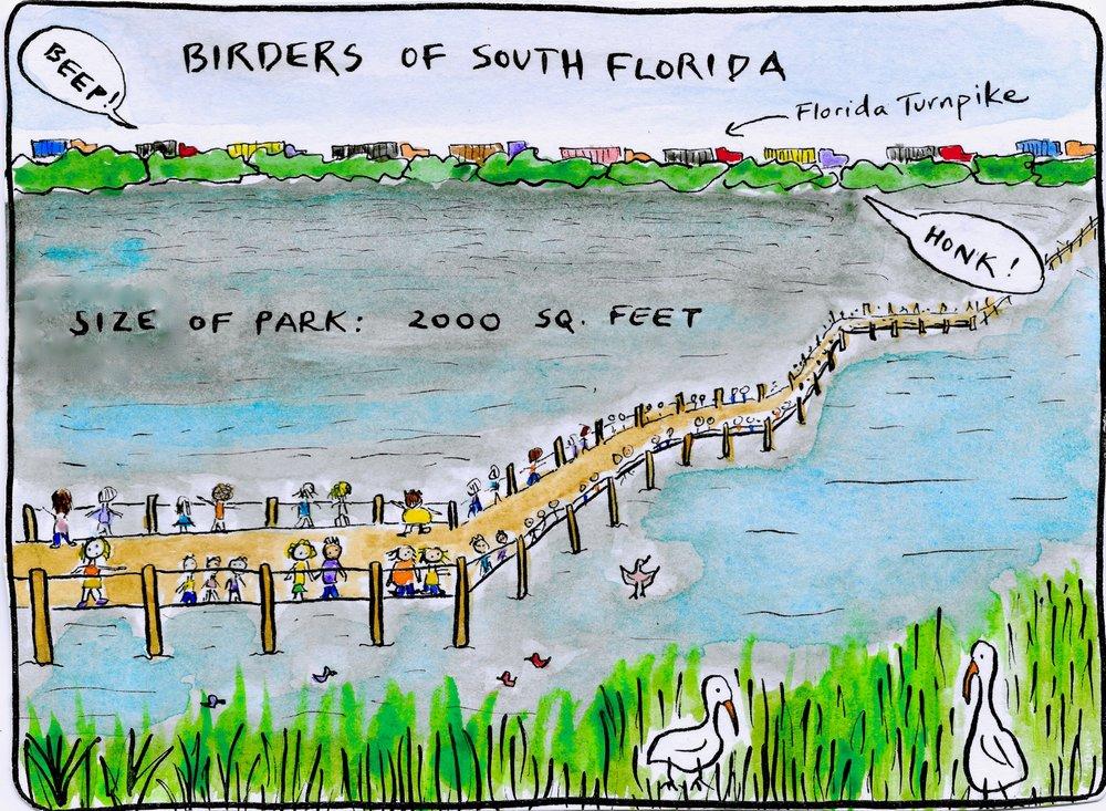 Birders of South Florida