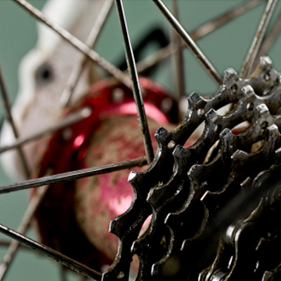 20/2 Cyclists
