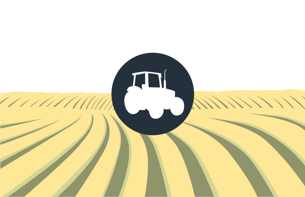 farm_illustration.png