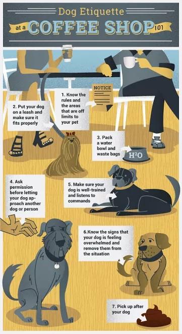 Dog-Etiquette-Coffee-Shop.jpg