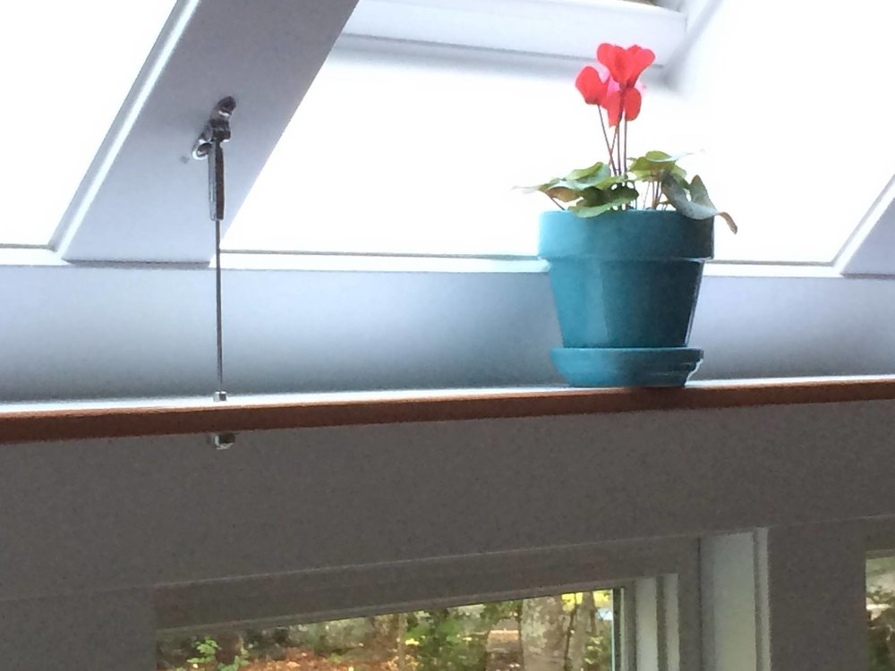 window shelf.jpg