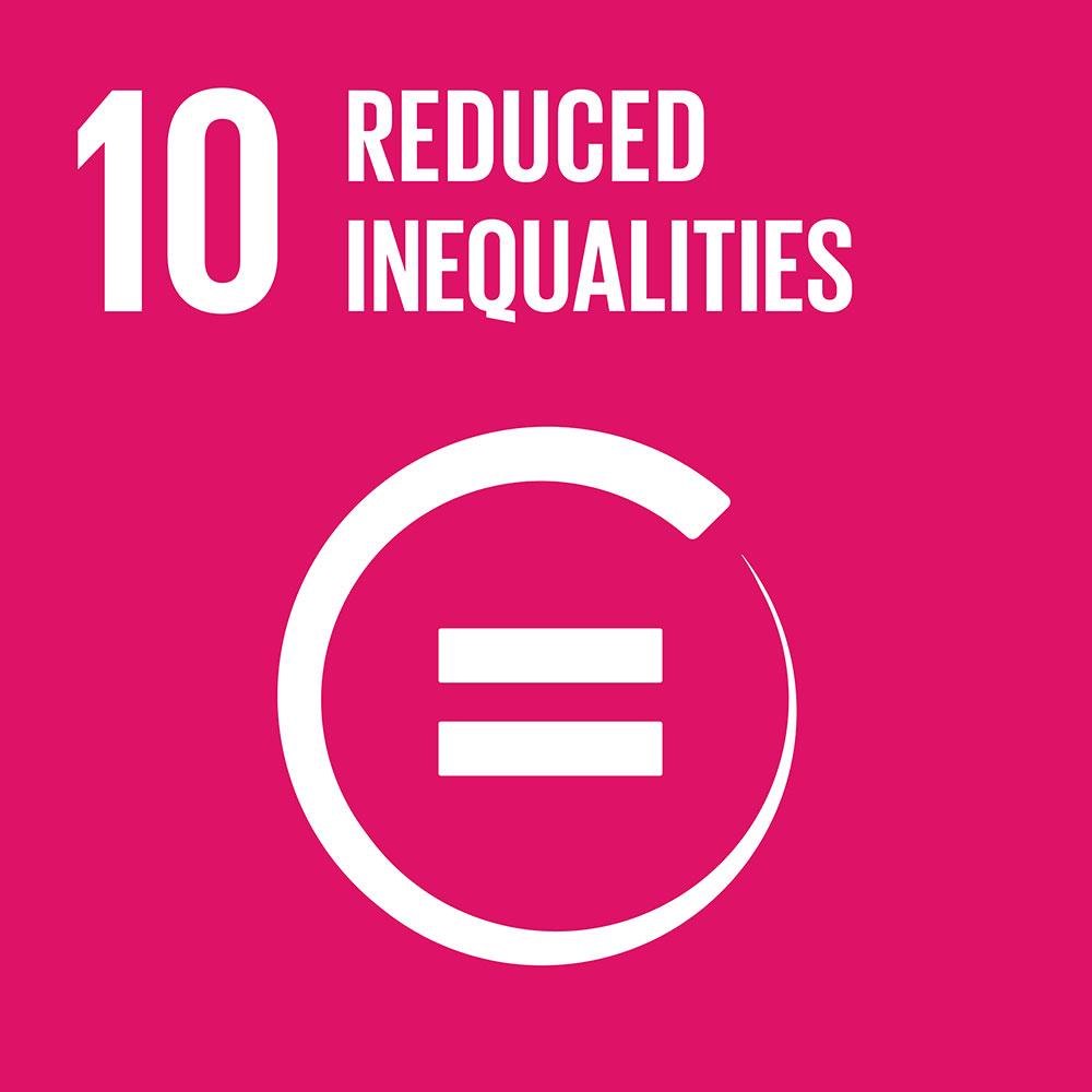 #10 Reduced inequalities.jpg