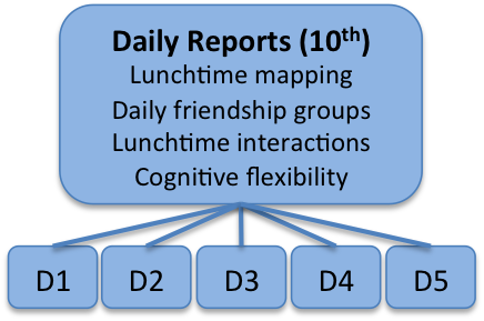DAILY REPORTS.png