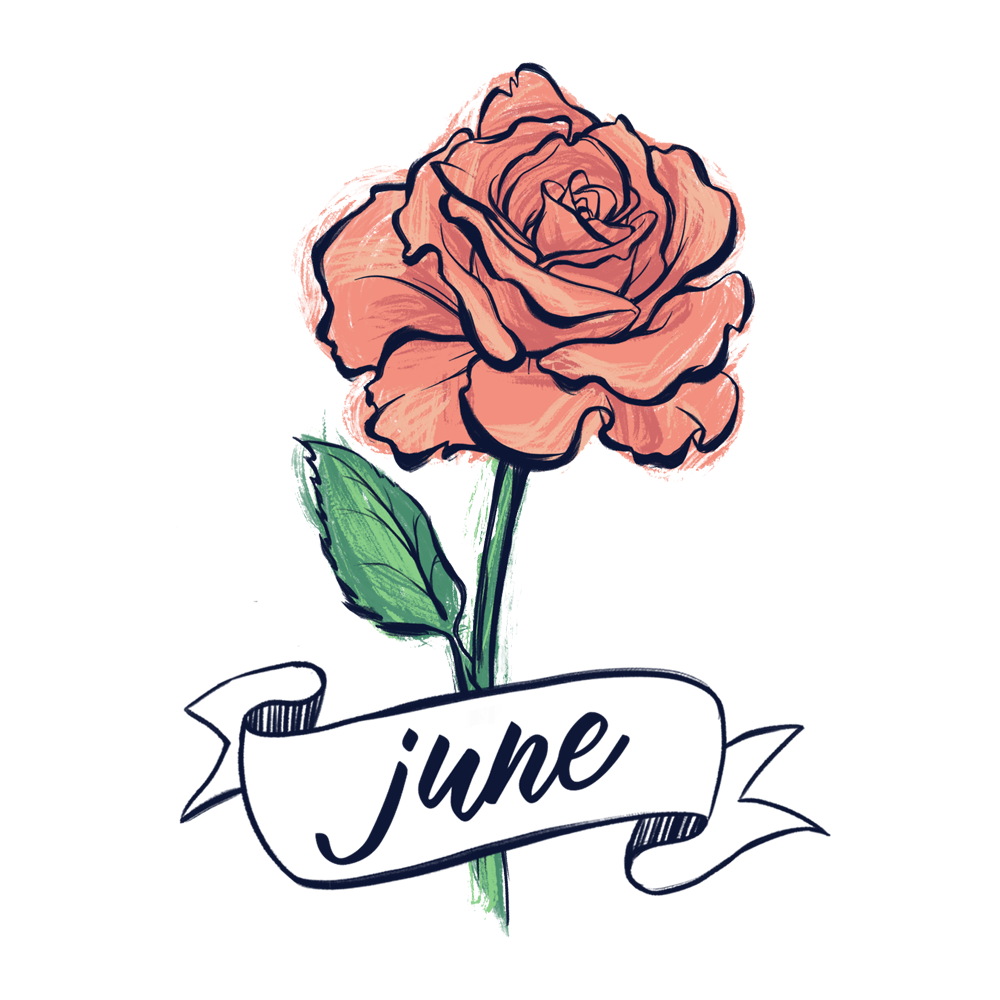 Rose flower illustration with hand lettering