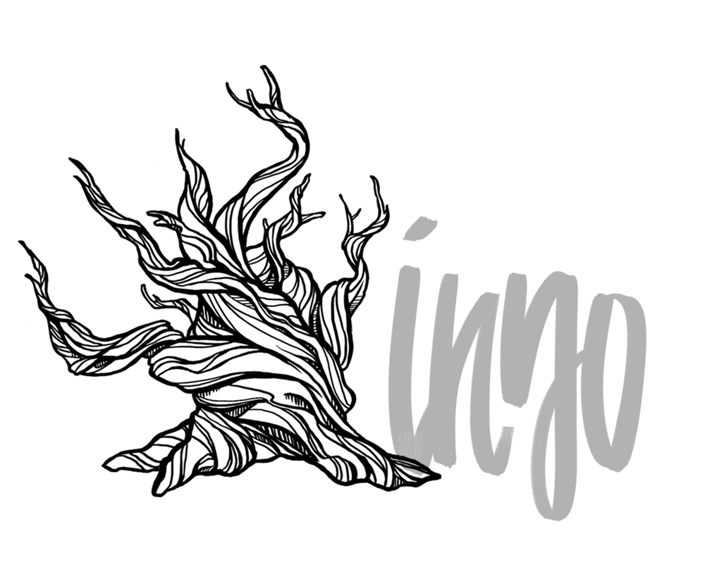 Bristlecone pine illustration with hand lettering