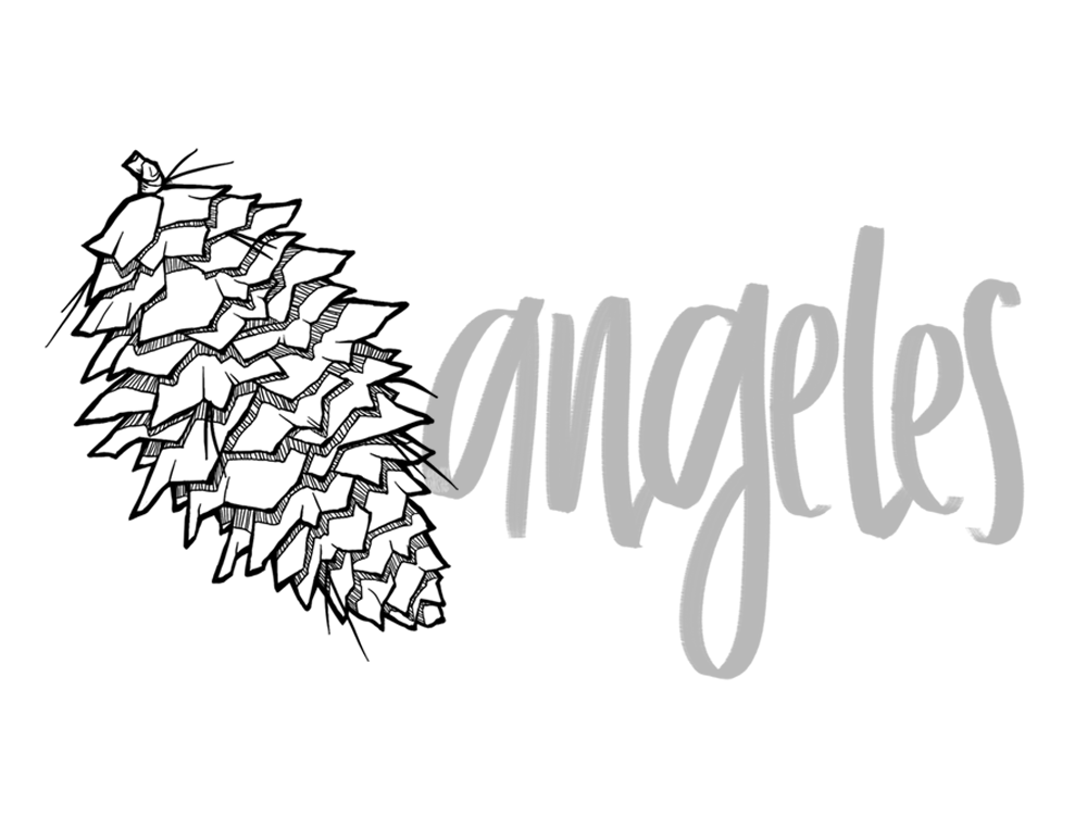 Giant pinecone illustration with hand lettering