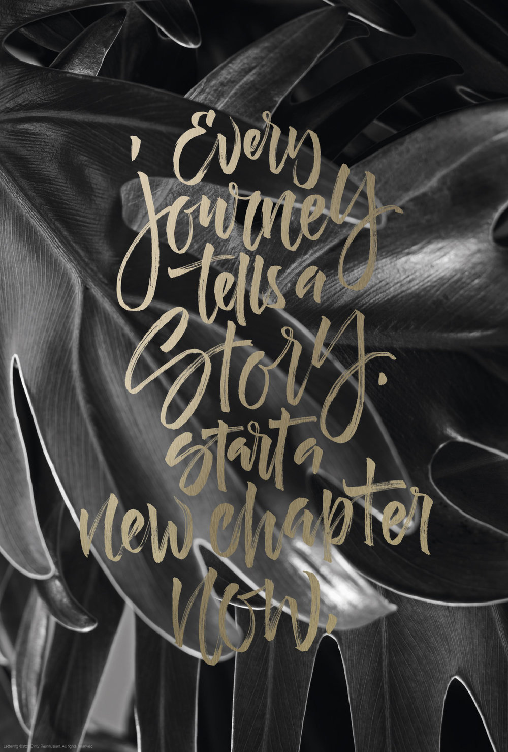 Brush-lettered quote in muted gold over black and white plant photography