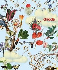 1 DRIADE 2017 - Catalog-1-pp.jpg