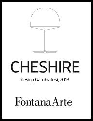 Cheshire leaflet 2014-1-pp.jpg