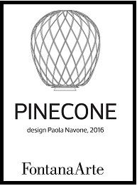 pinecone_folder-1-pp.jpg