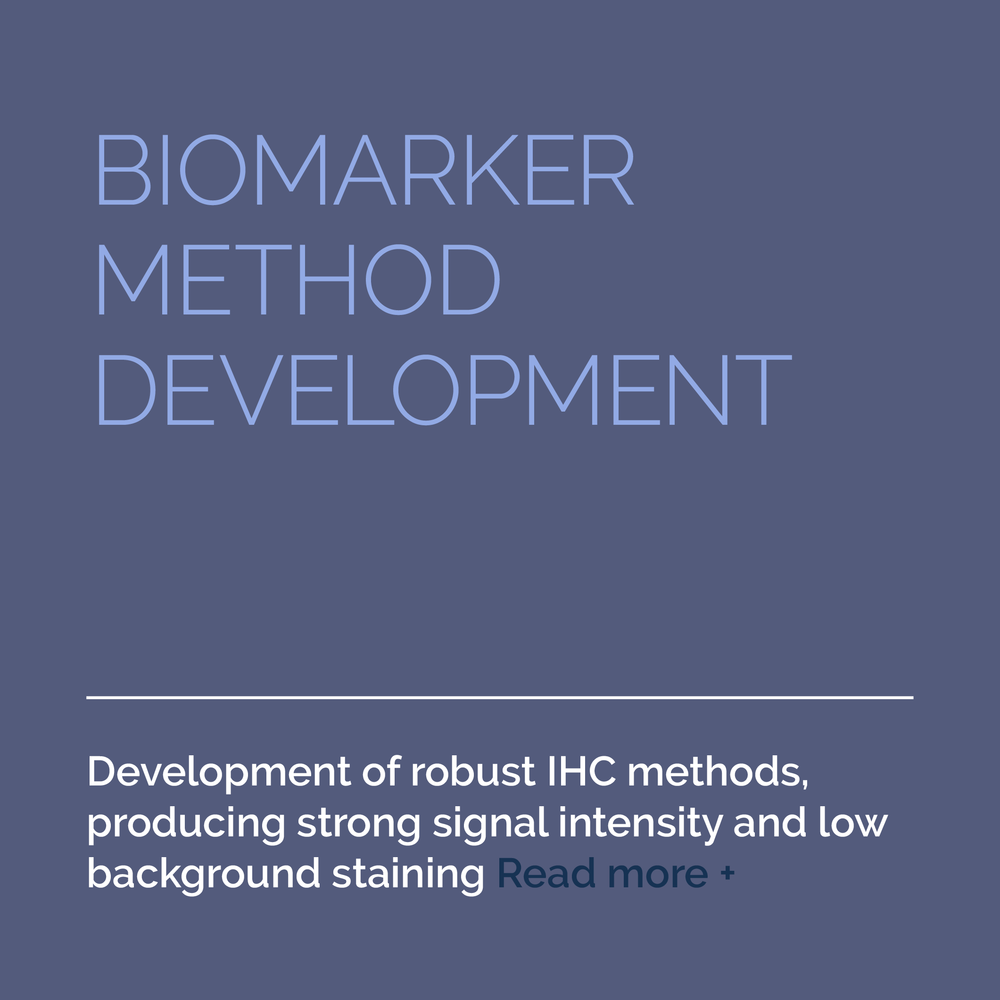 2-Services-Biomarker-Development-AFTER.png