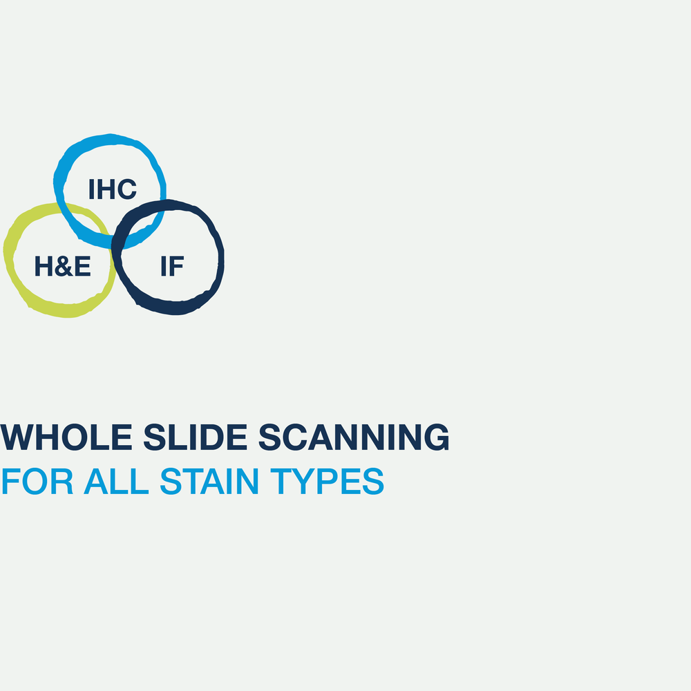Services-whole-slide-scanning-icon.png