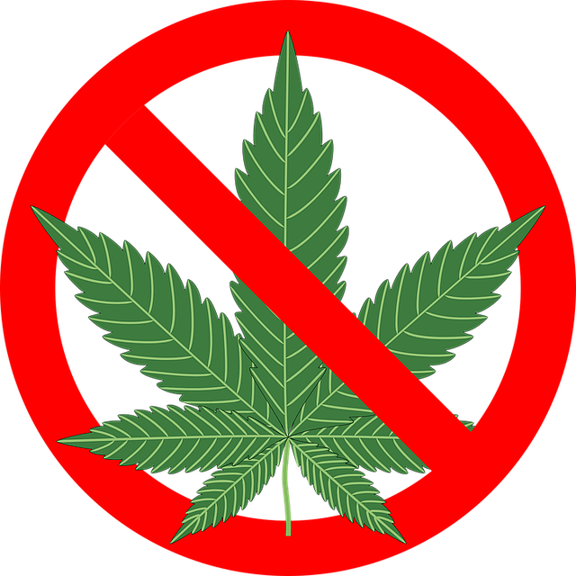 cannabis-1254745_640.png