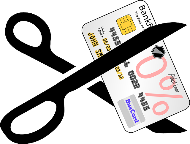credit-card-309613_640.png