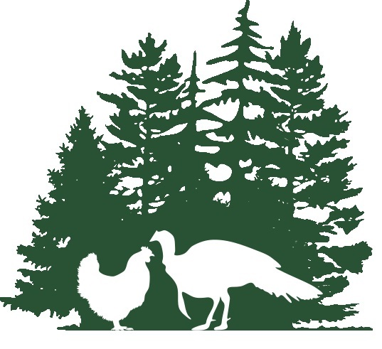 Pine Tree Poultry - Located in New Sharon, ME, Pine tree poultry raises all of our chicken products and Cornish hens. All of their animals are raised free-range, using sustainable practices, no antibiotics or hormones, and an all-vegetarian diet. You can learn more about Pine Tree Poultry here.