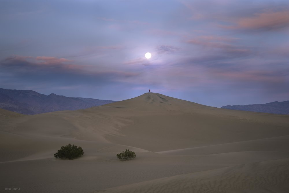 Desert Moon Gazing.jpg
