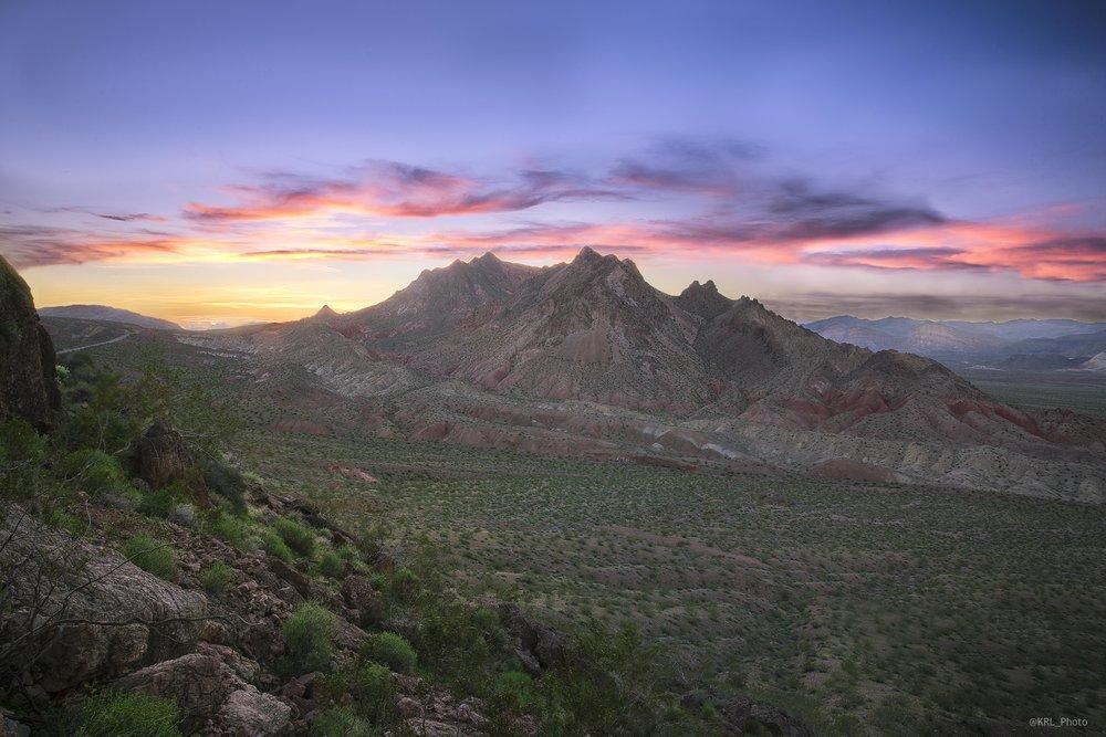 Desert Green.jpg