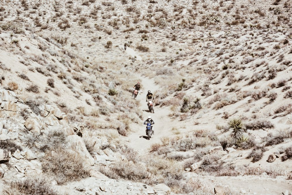 Johnson_Valley_OHV_WLF_Enduro_Moto-Mucci (8).JPG