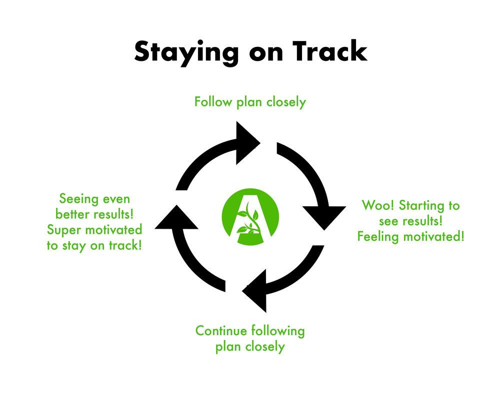 staying_on_track.jpg