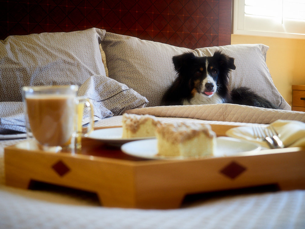 """Crumb cake is a darn good """"breakfast in bed"""" meal and Riley wasn't going to miss out."""
