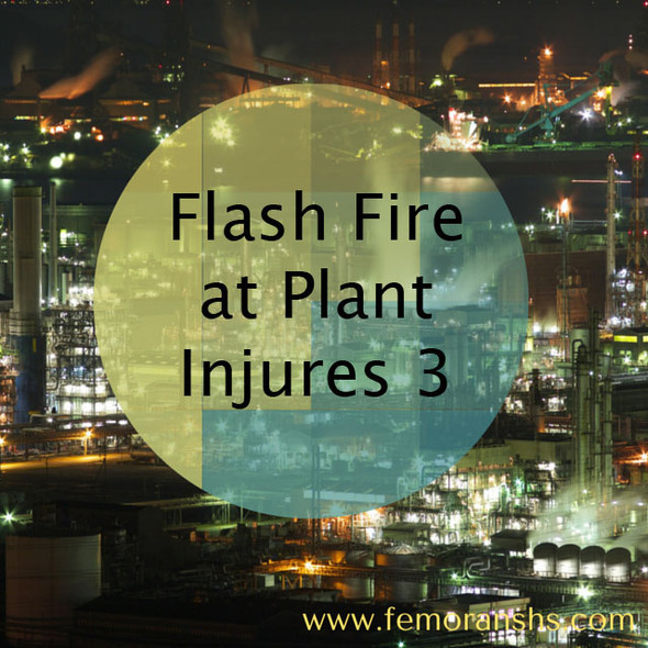 Flash Fire at Plant | F.E. Moran Special Hazard Systems