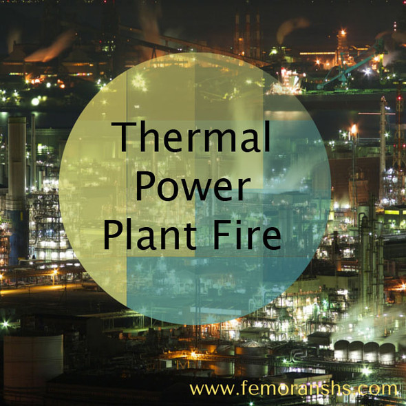 Thermal Power Plant Fire | F.E. Moran Special Hazard Systems