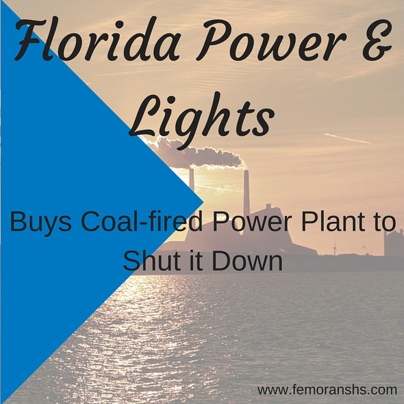 Florida Power & Lights Buys Power Plant and Shuts it Down | F.E. Moran Special Hazard Systems
