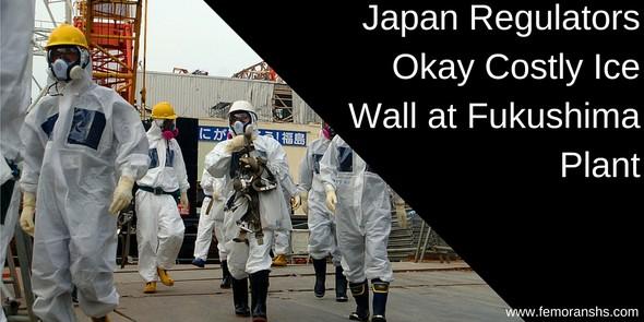 Japan Regulators Okay Costly Ice Wall at Fukushima Plant | F.E. Moran Special Hazard Systems