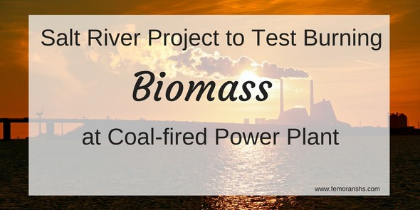 biomass for coal-fired power plant