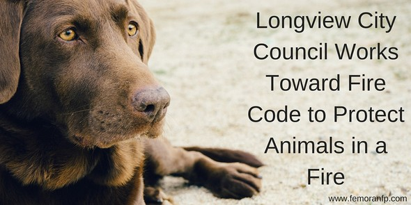 Longview City Council work to protect animals in case of fire with fire code changes