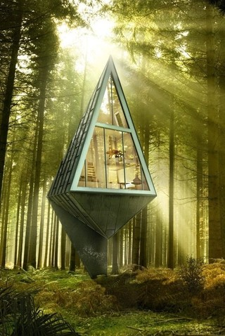 Tree House | The Moran Group